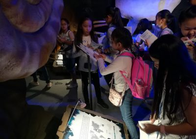 fieldtrip summer school oct 2017-national science museum-10