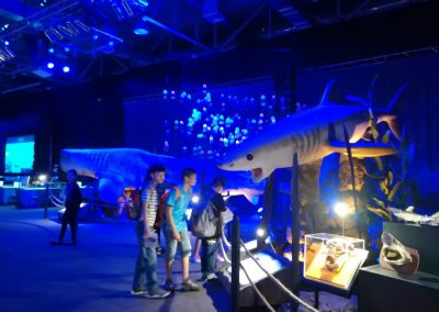 fieldtrip summer school oct 2017-national science museum-16