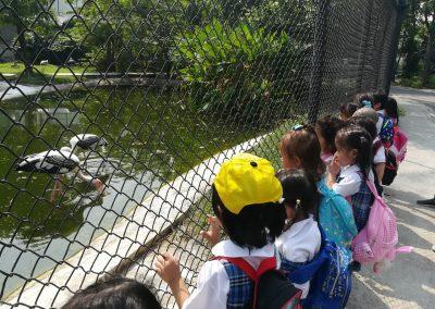 dusit zoo k1-2-8