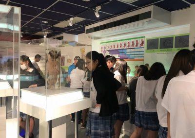 siriraj-phimukhsthan-museum-11