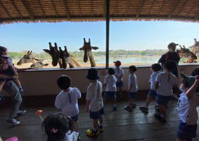 PS Field Trip to Safari World