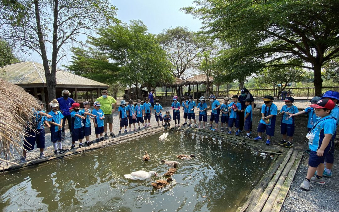 Field Trip to Farm De Lek on March 12 & 16, 2021